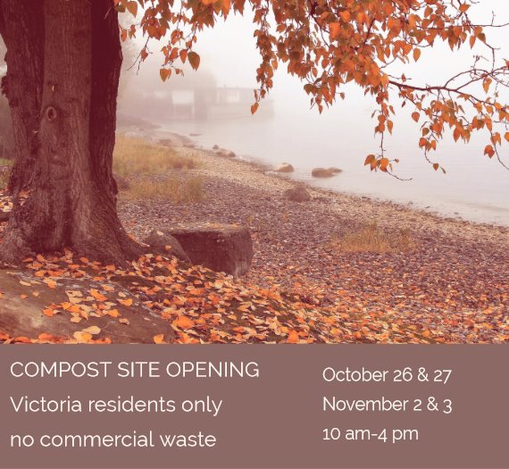 tree with autumn leaves falling and announcement of compost site hours